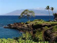 2020 MCAA Convention - Maui