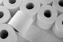 Toilet Paper Building - Community Service Project